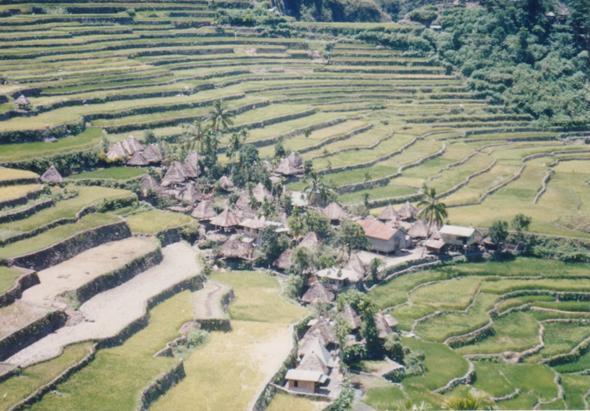Filipijnen - In het midden eiland grootte ...